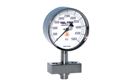 Homogenizer Sanitary Pressure Gauges
